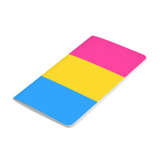 Pansexual flag journal
