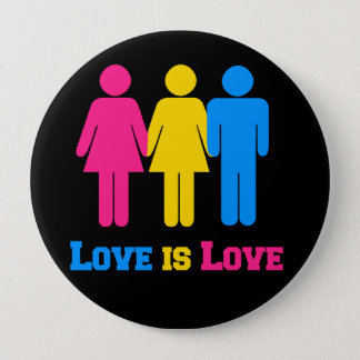 Pansexual Love Pinback Button