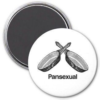 Pansexual - magnet