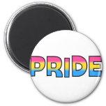 Pansexual/Omnisexual Pride Fridge Magnet