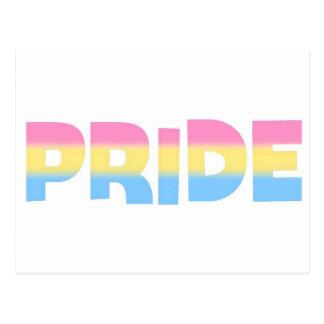 Pansexual/Omnisexual Pride Postcard