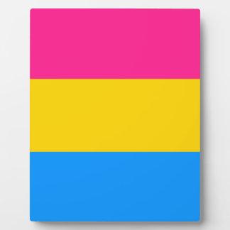 Pansexual pride flag display plaques