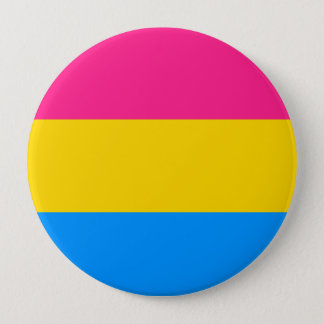 Pansexual Pride Flag Pinback Button