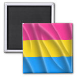 PANSEXUAL PRIDE MAGNETS