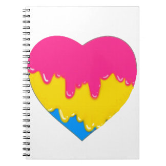 pansexual pride spiral notebook