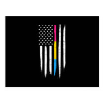 Pansexual Thin Line American Flag Postcard
