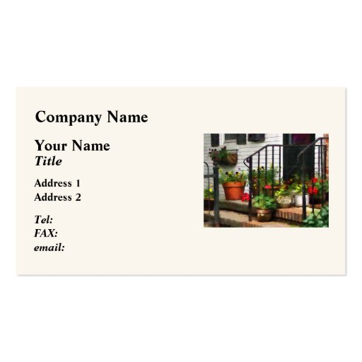 Pansies and Geraniums on Stoop Double-Sided Standard Business Cards (Pack Of 100)