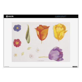 Pansies and Tulips Decals For Laptops