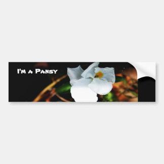 Pansies Bumper Stickers