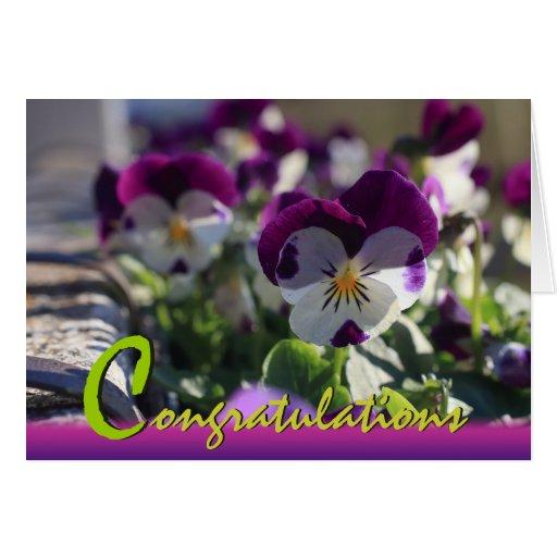 Pansies CC0473 Flower Celebration Card