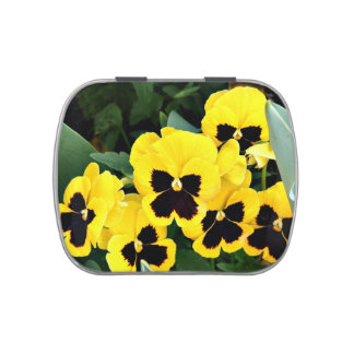 Pansies Jelly Belly Tin