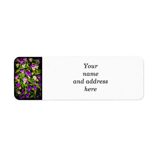 Pansies Return Address Label