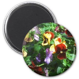 Pansies 2 Inch Round Magnet