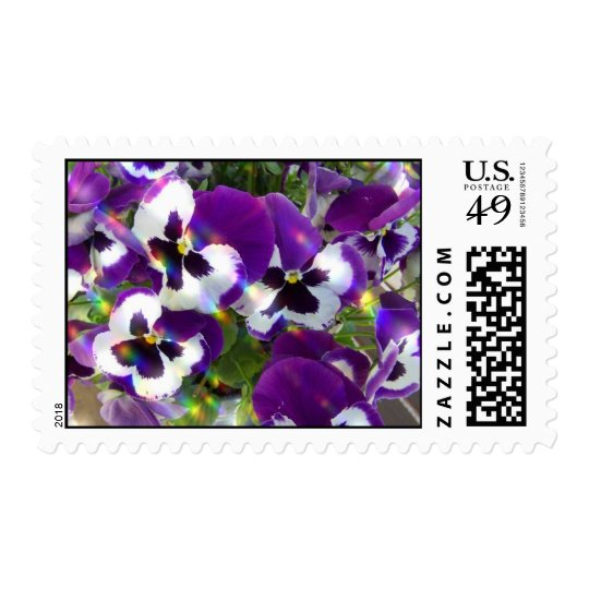 Pansies Postage Stamps