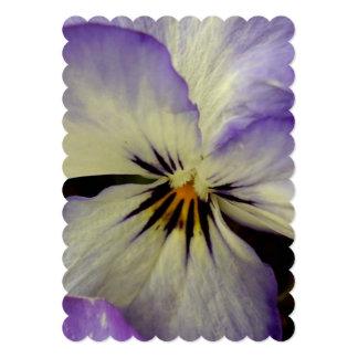 "pansy-17.jpg 5"" x 7"" invitation card"