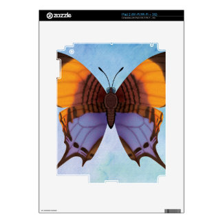 Pansy Daggerwing Butterfly iPad 2 Decal