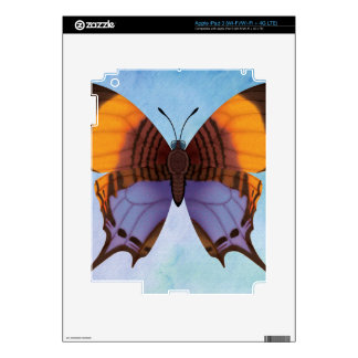 Pansy Daggerwing Butterfly iPad 3 Decal