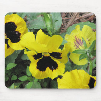 PANSY DELIGHT MOUSE PAD
