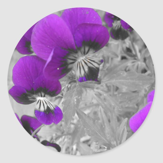 Pansy Effect Classic Round Sticker