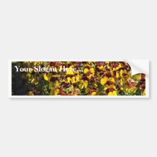 Pansy Flower Bumper Sticker