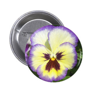 Pansy Flower Pictures Round Button