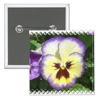 Pansy Flower Pictures Square Pin