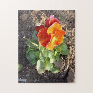 Pansy Flower Puzzle