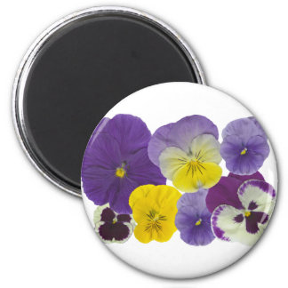 pansy flowers 2 inch round magnet