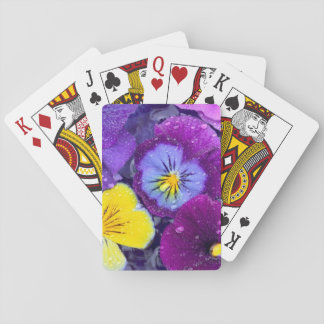 Pansy flowers floating in bird bath with dew 2 playing cards