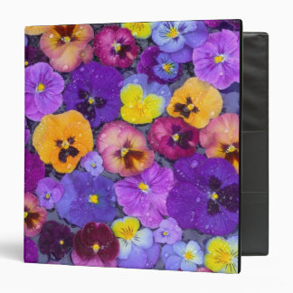 Pansy flowers floating in bird bath with dew vinyl binders