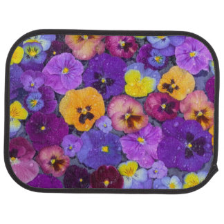 Pansy flowers floating in bird bath with dew car floor mat
