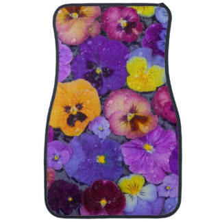 Pansy flowers floating in bird bath with dew car mat