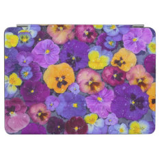 Pansy Flowers Floating In Bird Bath With Dew Ipad Air Cover at Zazzle