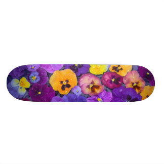 Pansy flowers floating in bird bath with dew skateboard