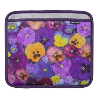 Pansy flowers floating in bird bath with dew sleeve for iPads