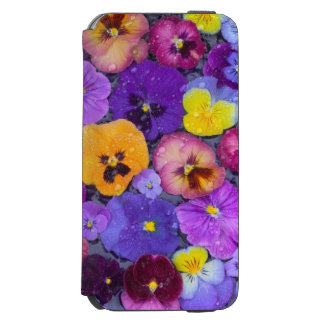 Pansy flowers floating in bird bath with dew incipio watson™ iPhone 6 wallet case