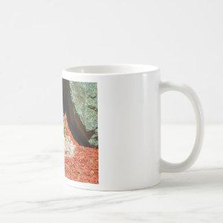 Pansy Flowers in Purple Classic White Coffee Mug