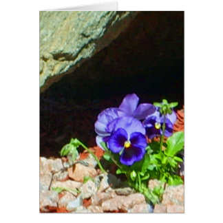 Pansy Flowers in Purple Greeting Card