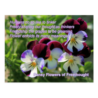 Pansy Flowers of Freethought Postcard