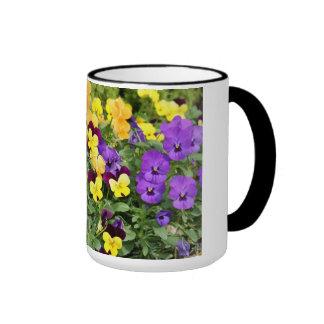 Pansy Flowers Ringer Mug