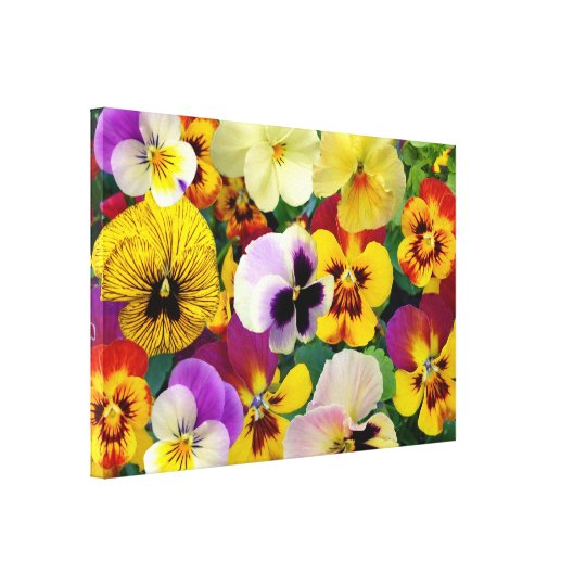 Pansy Flowers  ~ Wrapped Canvas Print