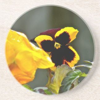 Pansy in the gardn beverage coasters