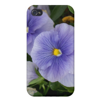 Pansy iPhone 4 Cover