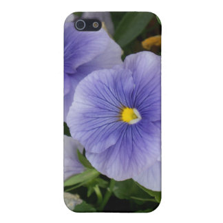 Pansy iPhone 5 Cover
