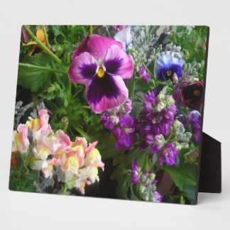 Pansy N friends Photo Plaque