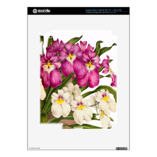 Pansy Orchid Flowers Skin For iPad 3