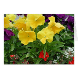 Pansy Pannier Greeting Card