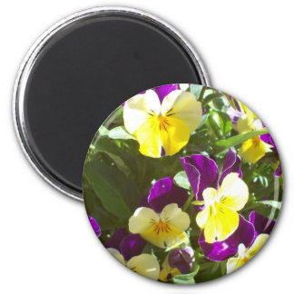 Pansy Patch 2 Inch Round Magnet