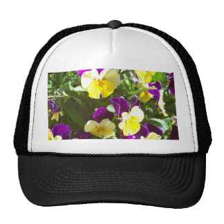 Pansy Patch Hat