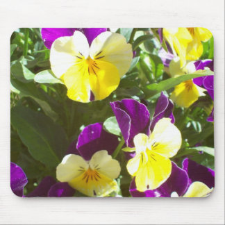 Pansy Patch Mouse Pad